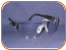 Professional Grade Safety Glasses